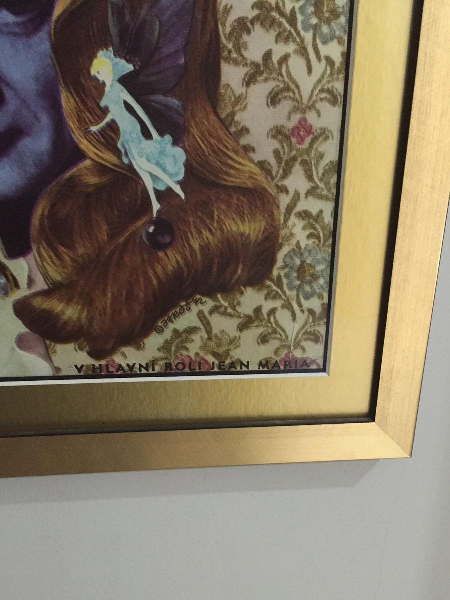 Donkey Skin Vintage Poster