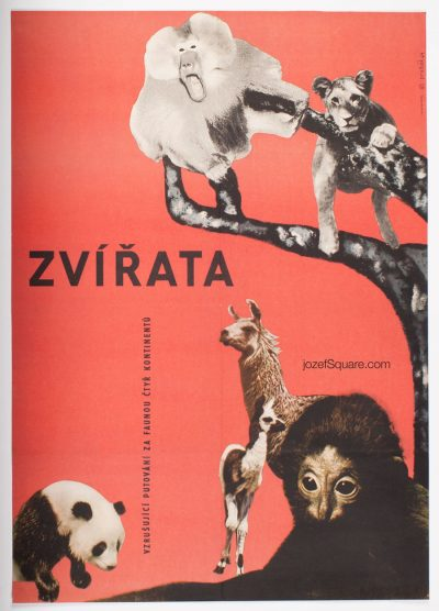 Movie Poster, The Animals, Cenek Prazak